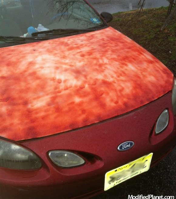 Car Photo Ford Escort Hood Diy Spray Paint Job Fail