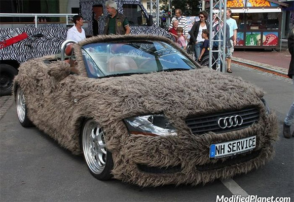 car-photo-2004-audi-tt-furry-exterior-fur-animal